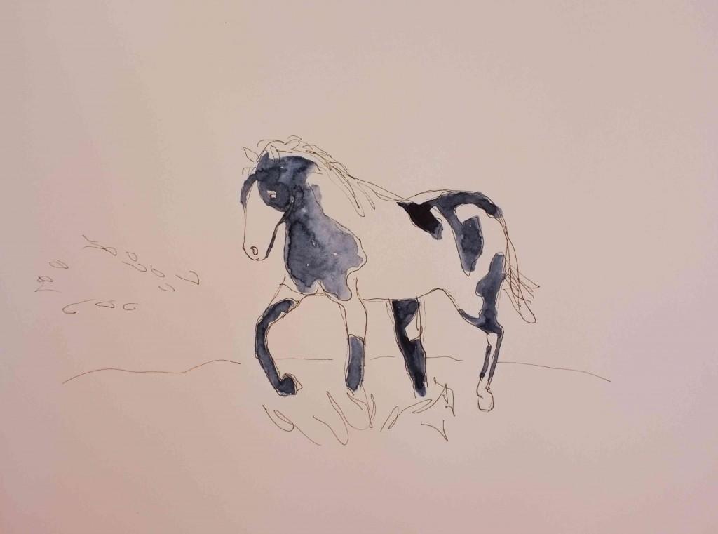 Horse.compressed